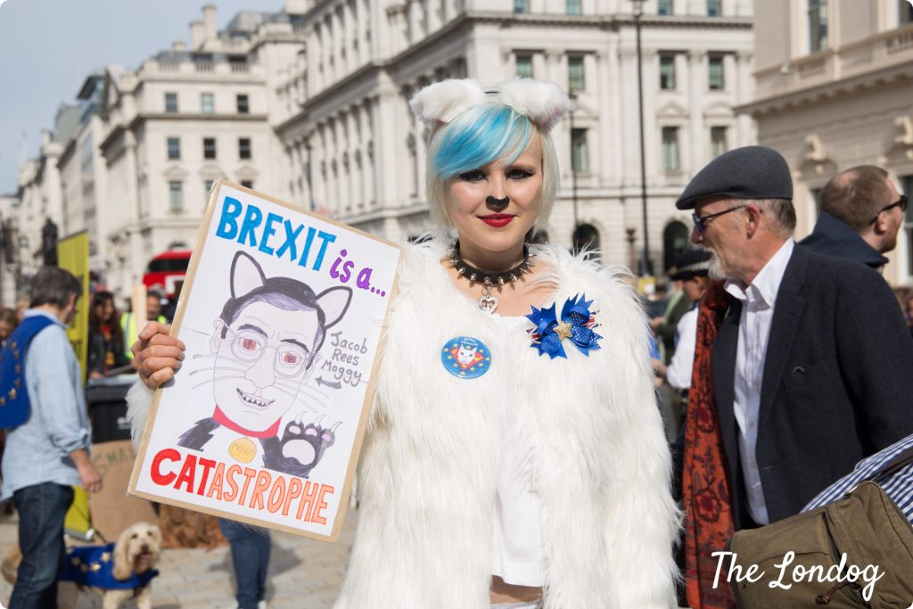 Lady dressed up as dog to protest against Brexit at Wooferendum march