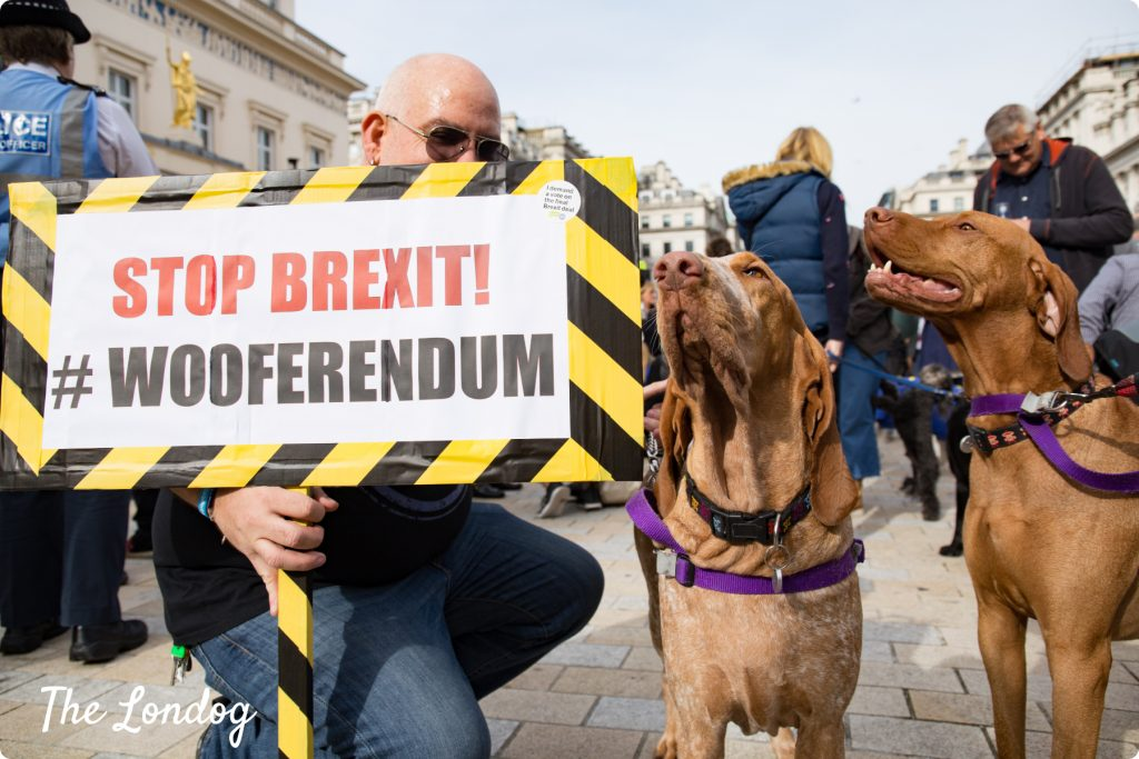 Wooferendum sign and two large dogs at the Wooferendum March in London