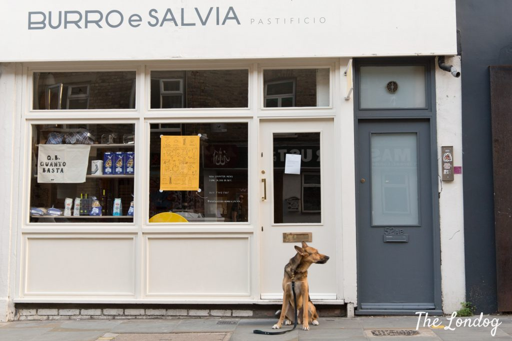 Dog outside dog-friendly restaurant Burro & Salvia in Shoreditch London