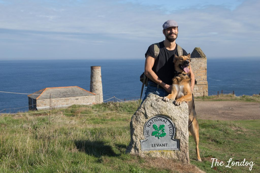 Dog and lad at Levant Mine on the coast in West Cornwall