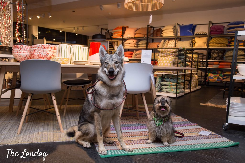 Guide to dog-friendly stores in Central London | The Londog