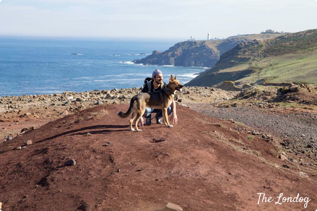 Dog and man sit on red earth on the path on the Tin Coast, with the blue sea behind them, in Cornwall