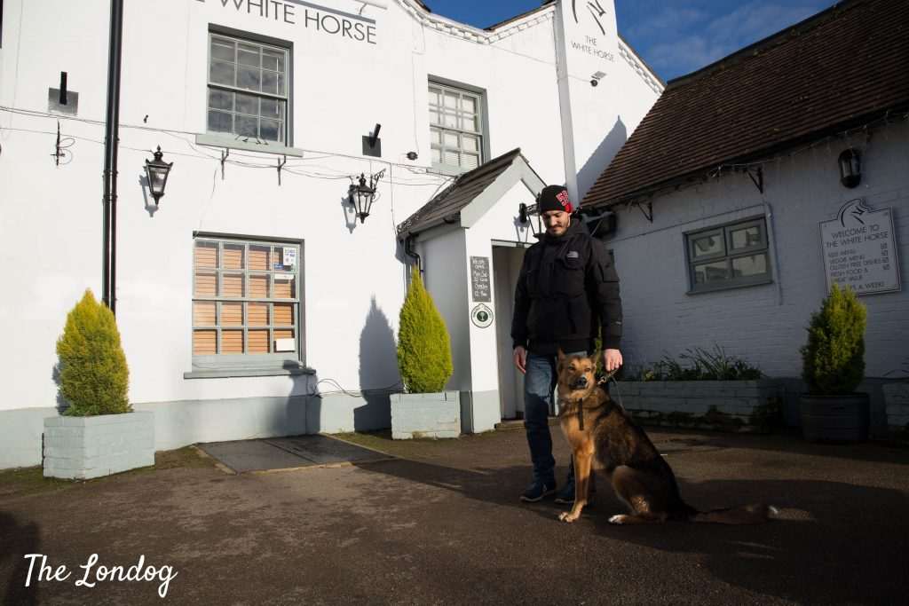 Dog and owner outside dog-friendly pub White Horse in Ridgmont on a sunny day