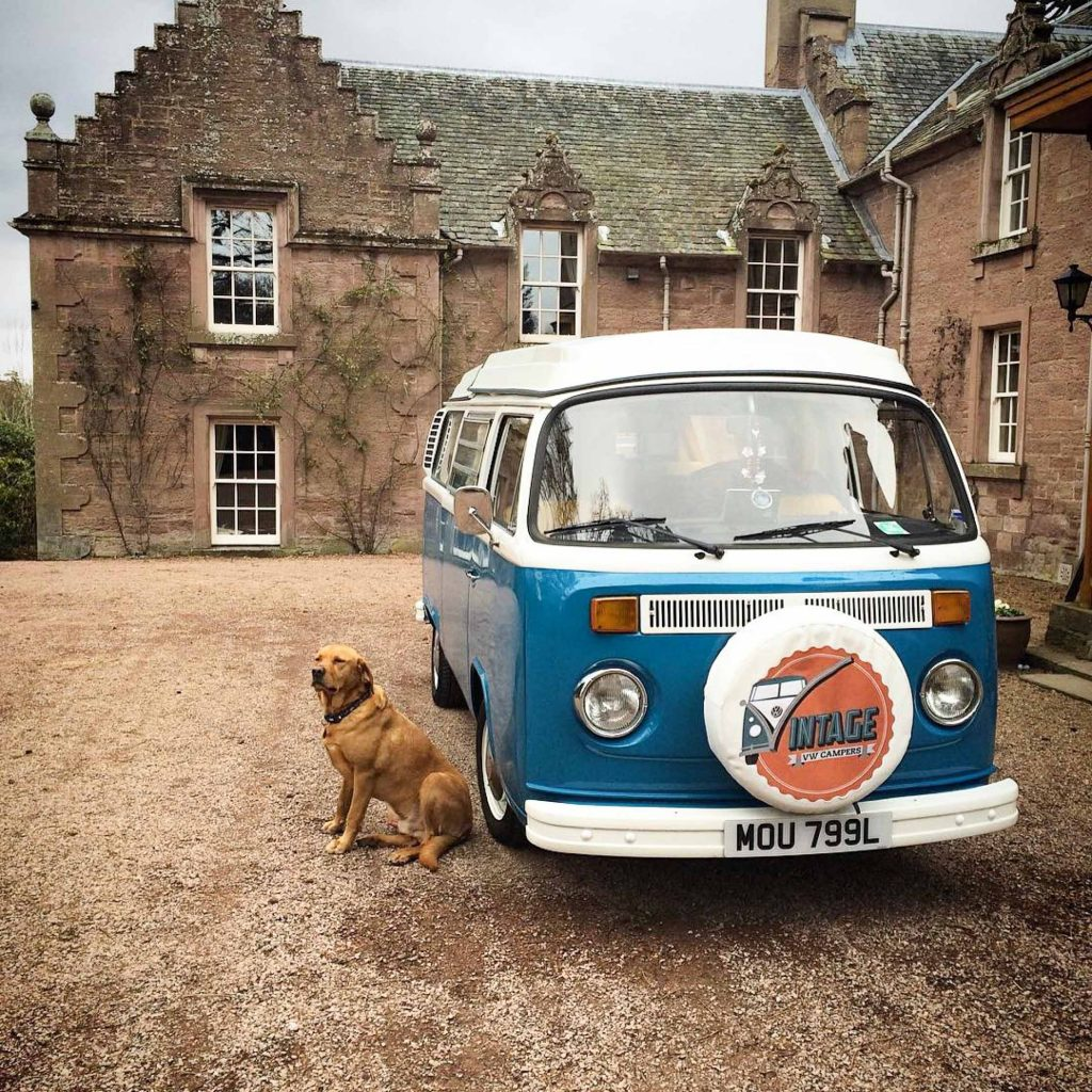 Retriever sits on gravel next to Vintage VW camper