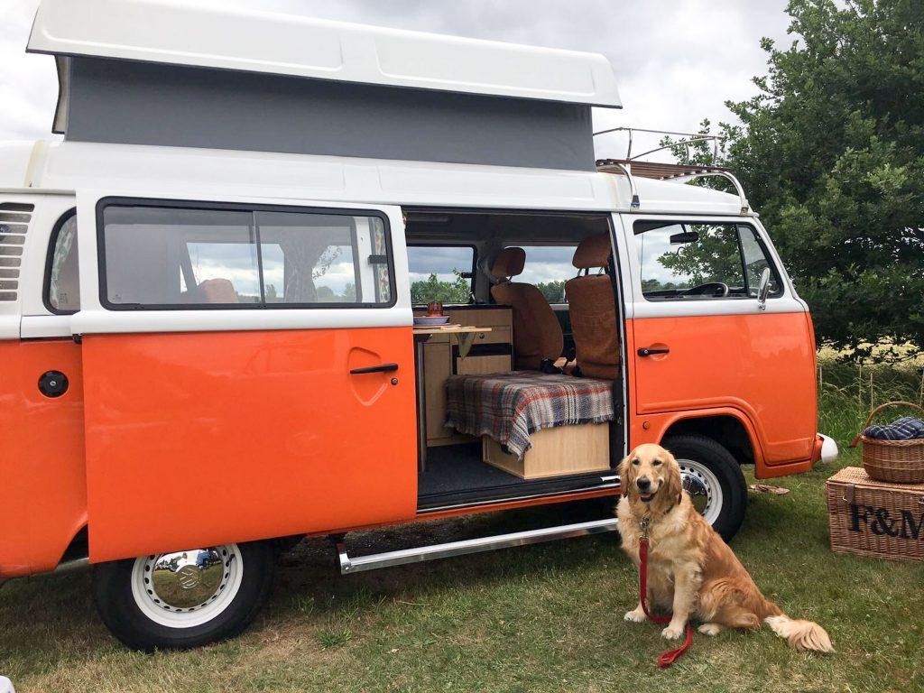 Labrador dog sits next to orange VW camper by Joyful Journey hire
