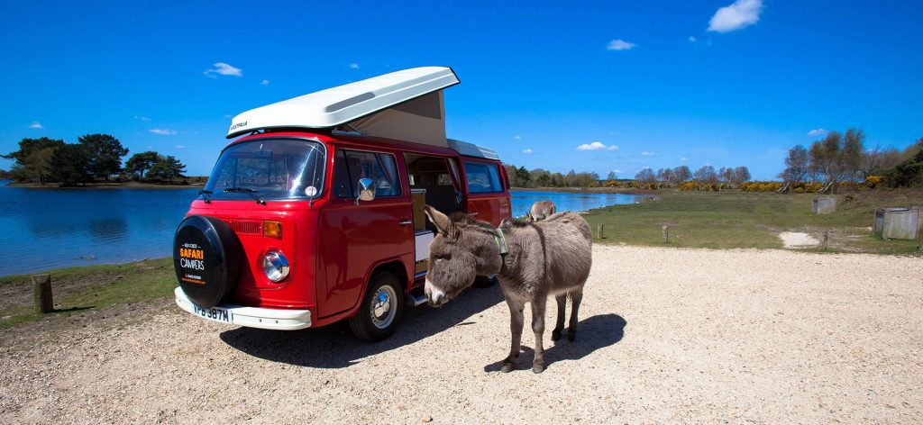 Red campervan with donkey near body of water