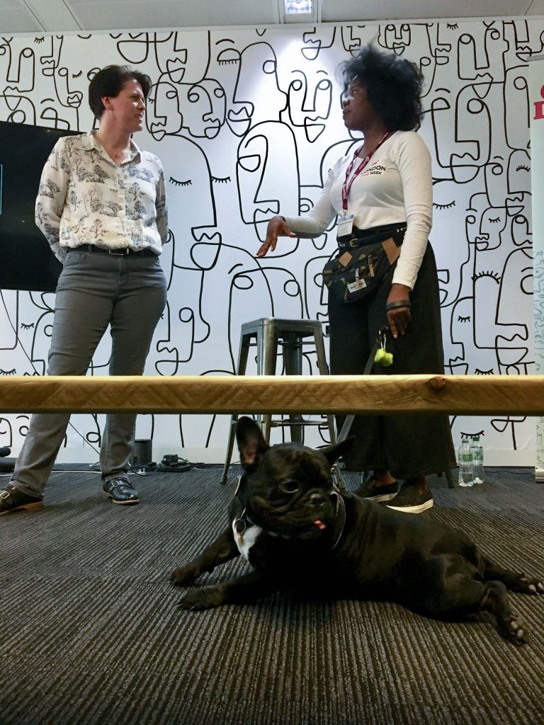 Chubb the Frenchie on the carpet while London Dog Week founder gives speech at Perkbox office