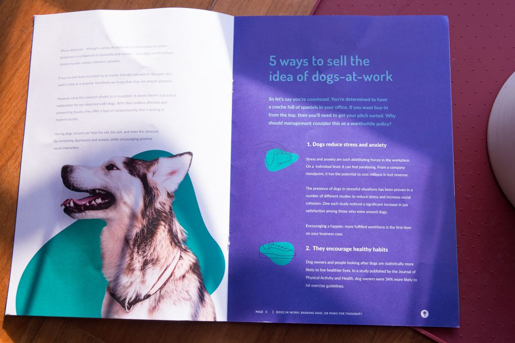 Booklet by Perkbox about ways to pitch the idea of dogs at work