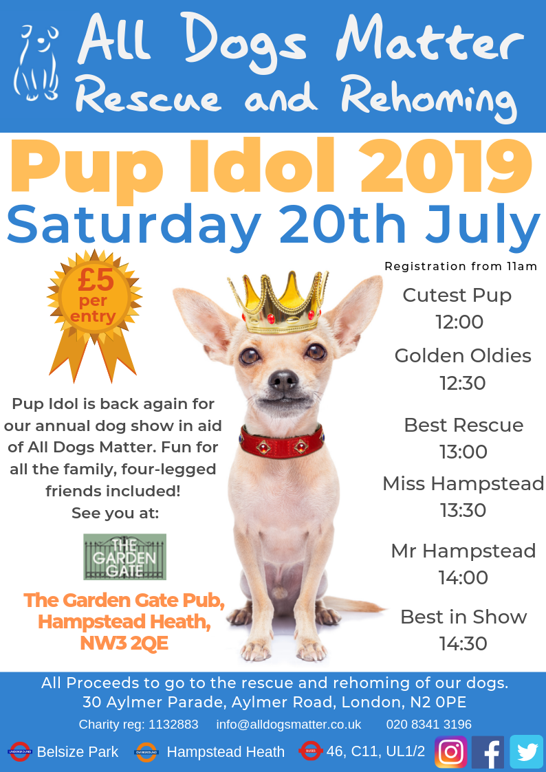 Pup Idol Flyer 2019