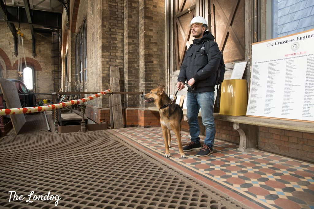 Dog and man at the Prince Consort beam engine