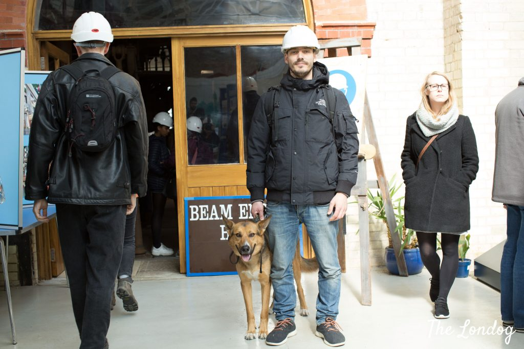 Dog with owner wearing a cap outside the beam engine
