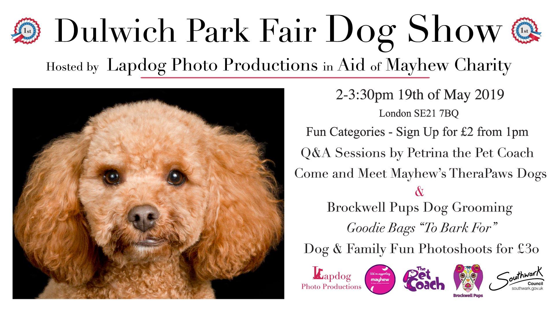 Dulwich Park Fair Dog Show   The Londog