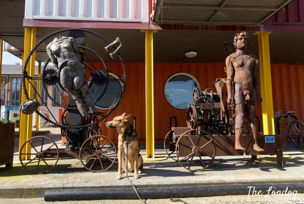 Dog sits next to some sculptures outdoor in the sunshine