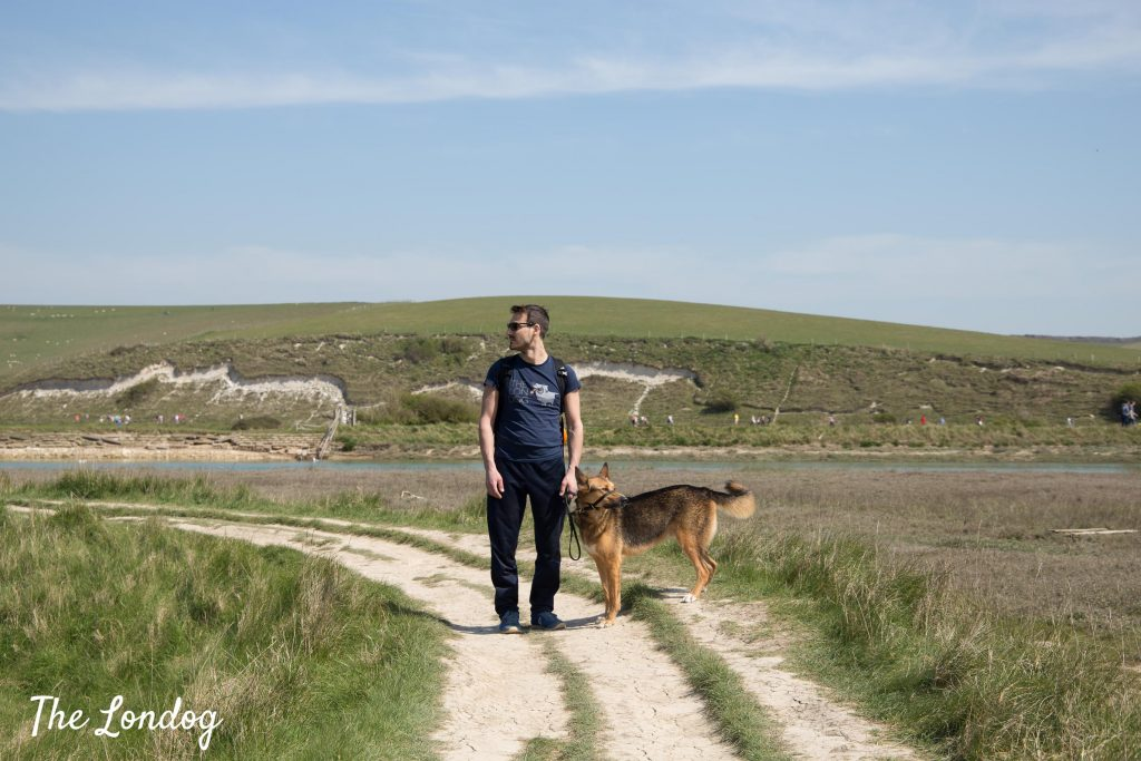 Dog and man at Cuckmere Valley