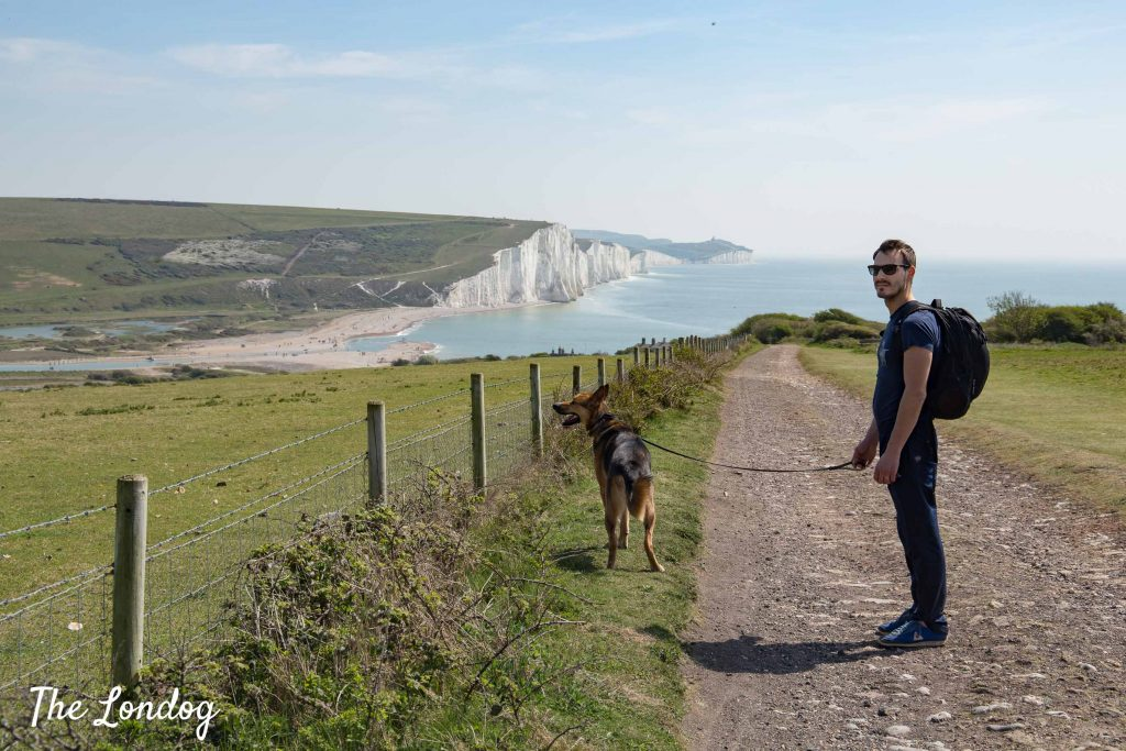 Dog and man stand on trail with Seven Sisters white cliffs on the horizon, blue sea and green fields