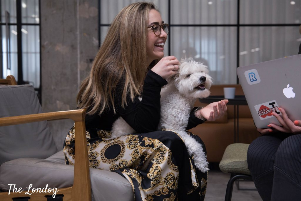 Lady holding dog on her lap at work