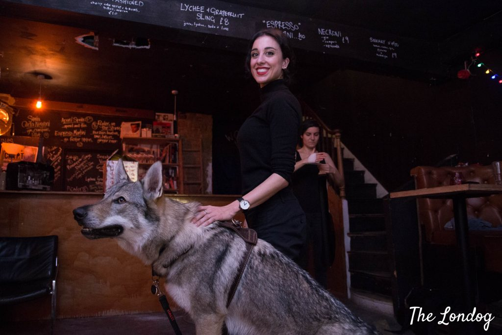 Wolfdog poses on stool with theatre director lady in a dark crypt