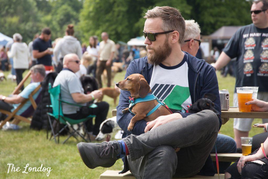 sausage dog on owner's lap at dog festival