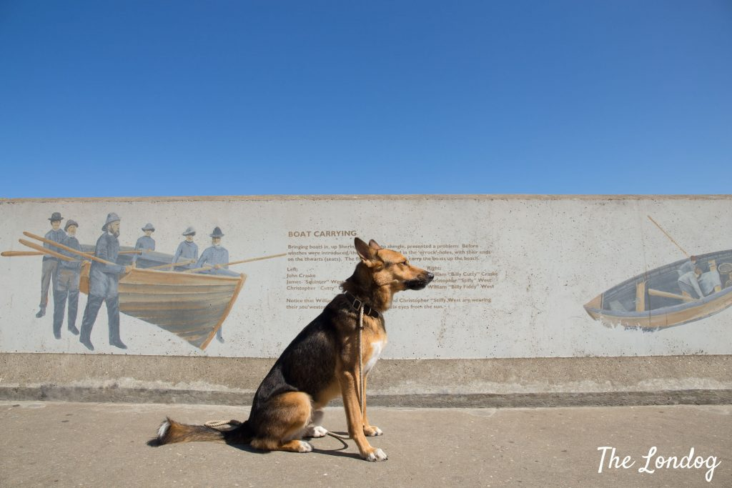 Dog in front of wall art about fishermen in Sheringham