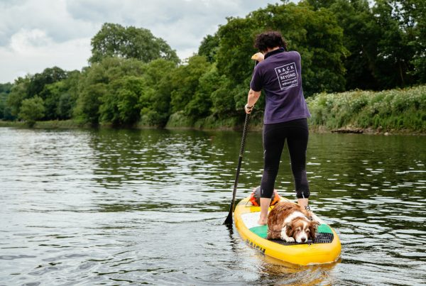 Dog on stand up paddle board with man paddling