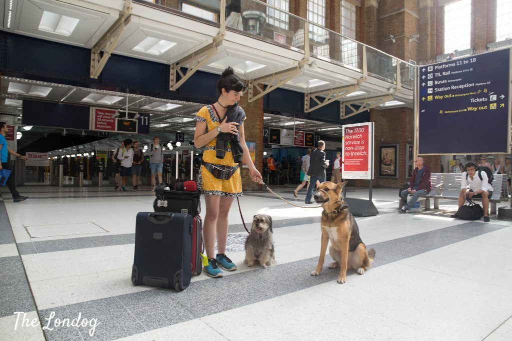 dogs at liverpool street station