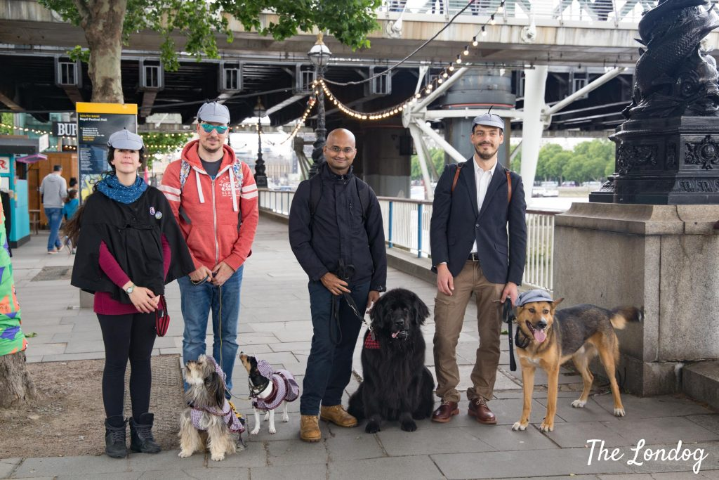 Photo of dog team at CluedUpp in London