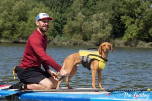 Photo of Back of Beyond Adventures founder with his dog on a SUP