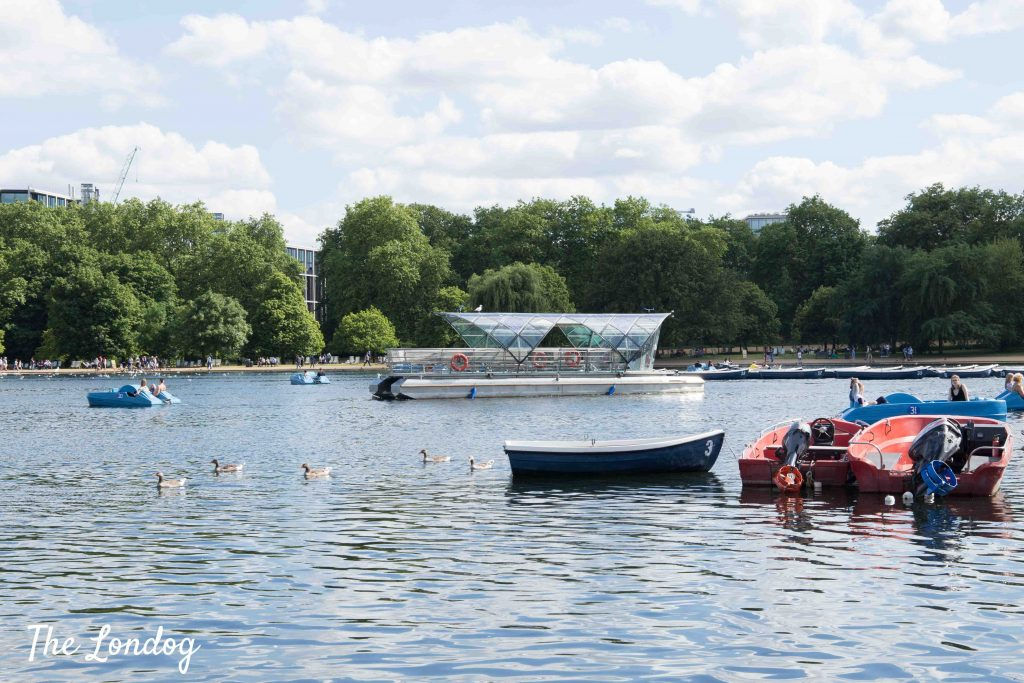 Dog-friendly Solar Shuttle at the Serpentine