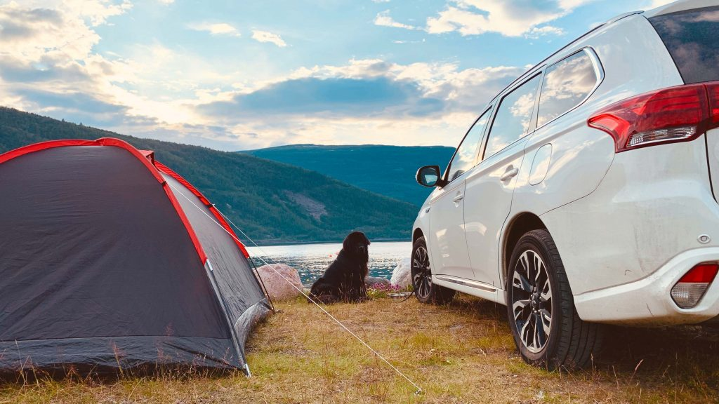 dog next to tent and car in Norway