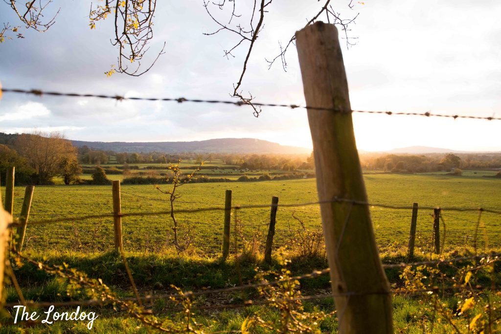 Countryside walk in the Cotswolds