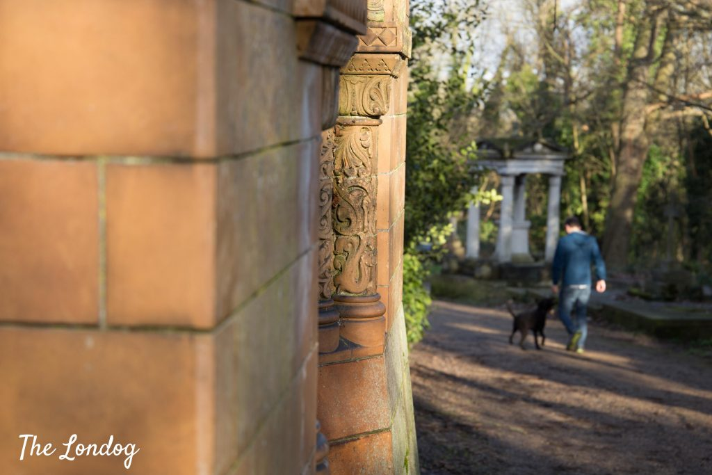 Dog and owner walk near monument at Nunhead Cemetery