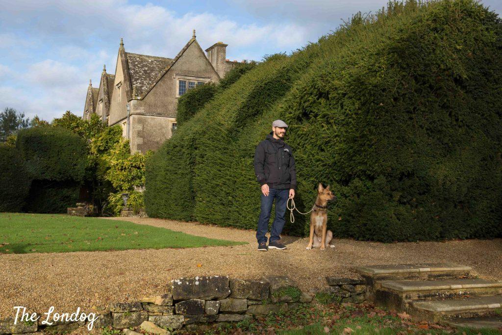 Man and dog near edge in hotel garden