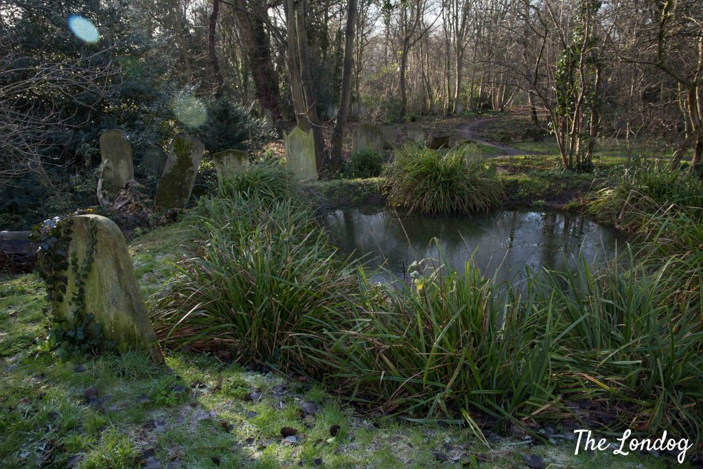 Pond at Tower Hamlets Cemetery Park