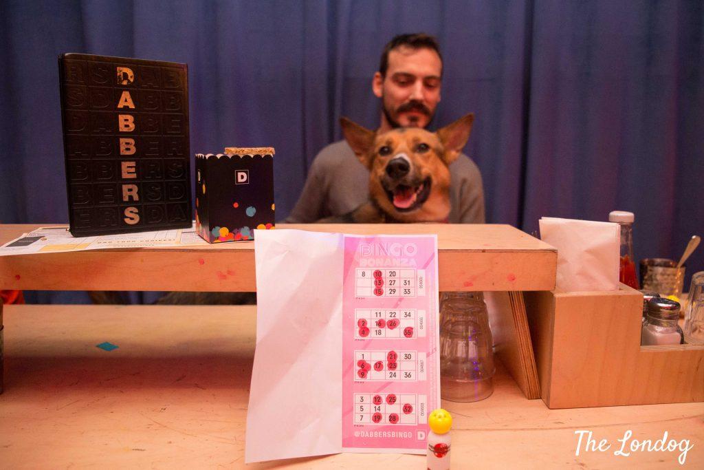 Dog with bingo card and dabber