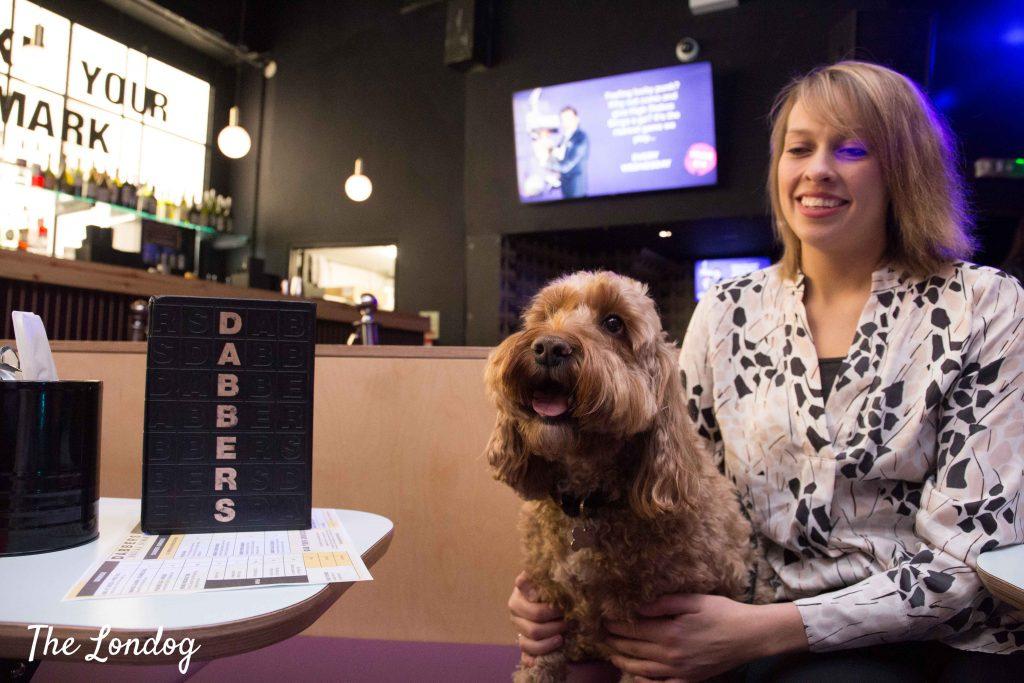 Cockapoo dog at table at Dabbers Bingo