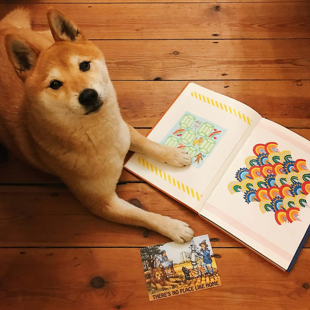 Hiro working from home mandala