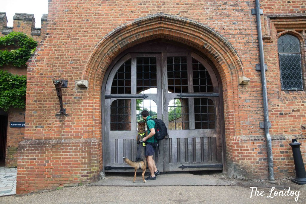 Dog and man at gate of Hatfield House