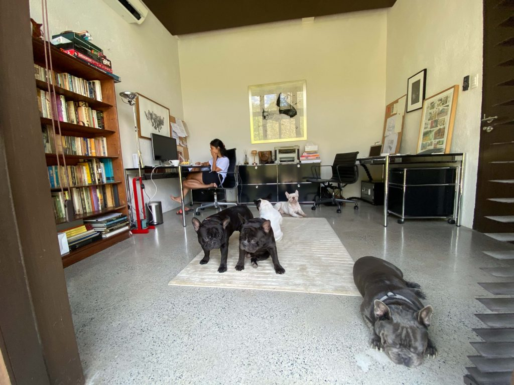 Dogs at home during lockdown in Philippines
