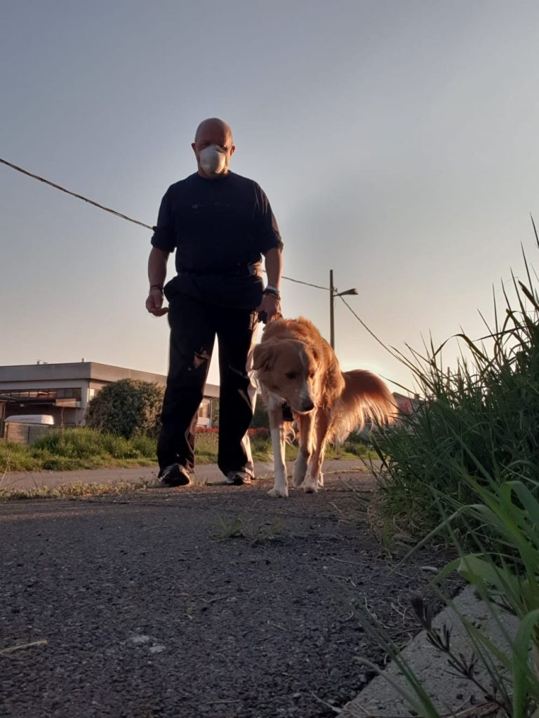 dog walks with owner with mask during lockdown