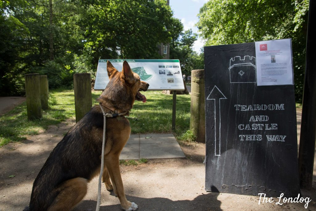 Dog near sign leading to dog-friendly Severdroog Castle