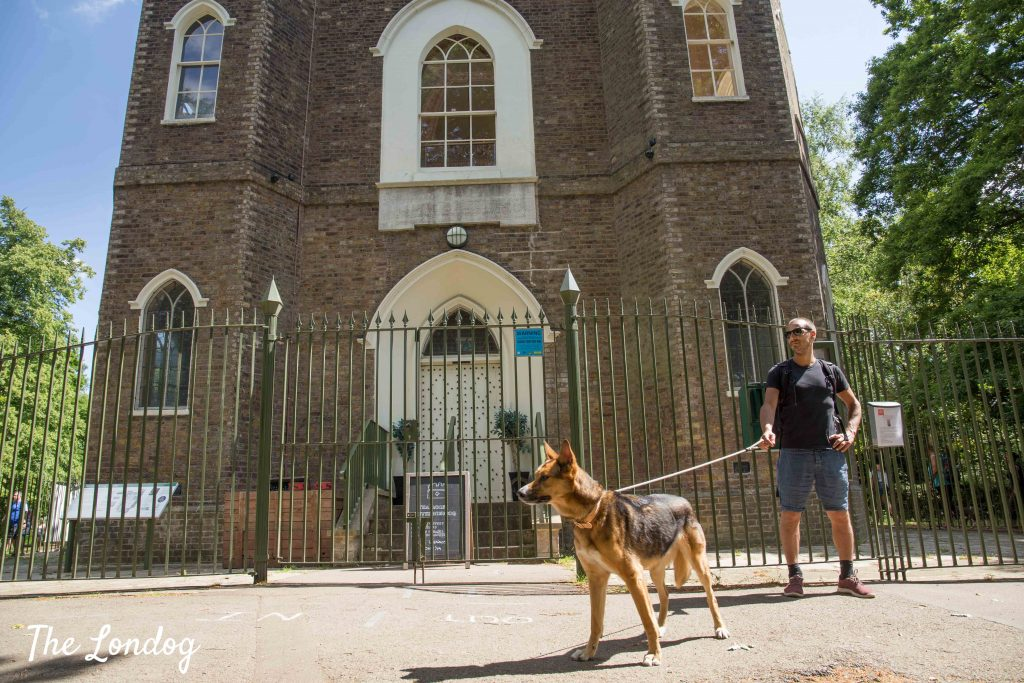 Dog at Severndroog Castle