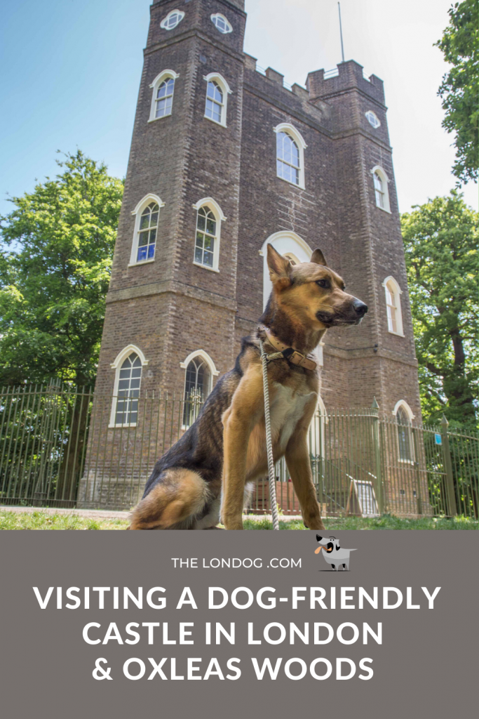 Poster dog-friendly castle in London and Oxleas Woods