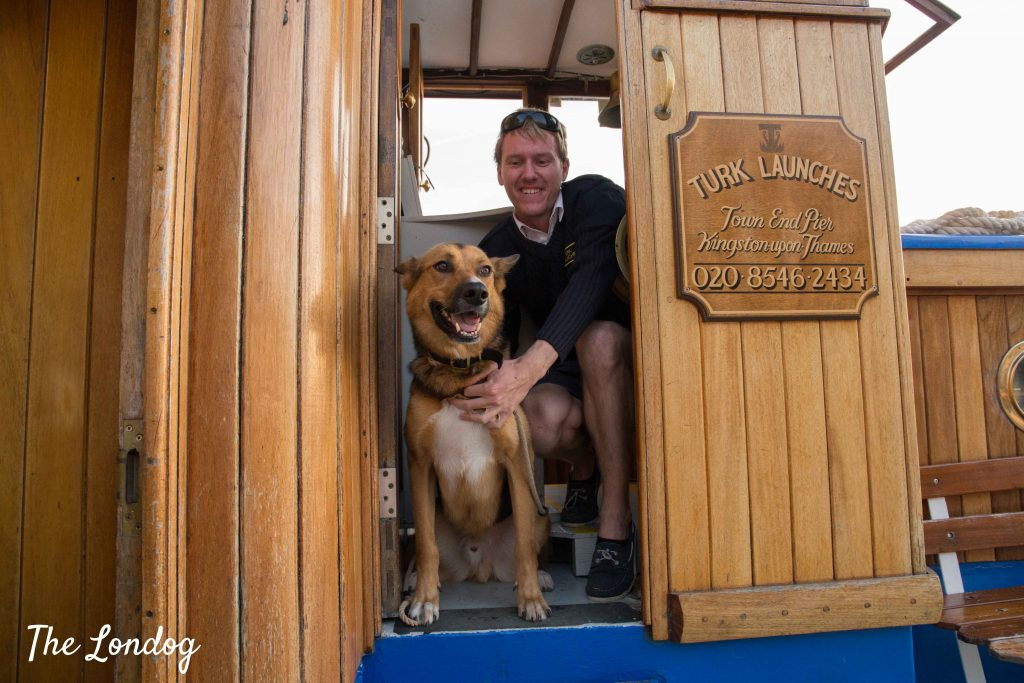 Dog with captain on board of Yarmouth Belle on the Thames