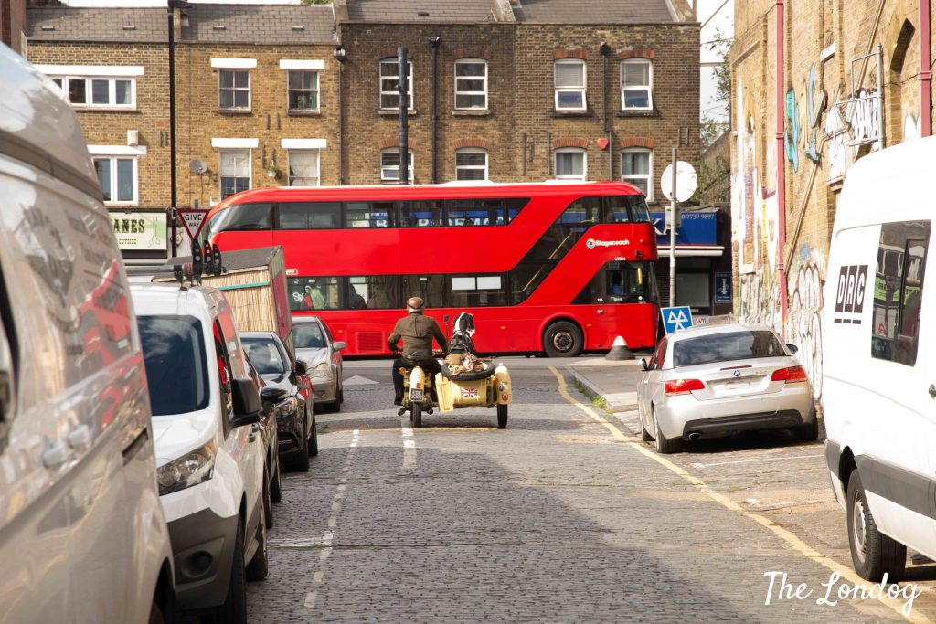 Dog on sidecar with London red bus