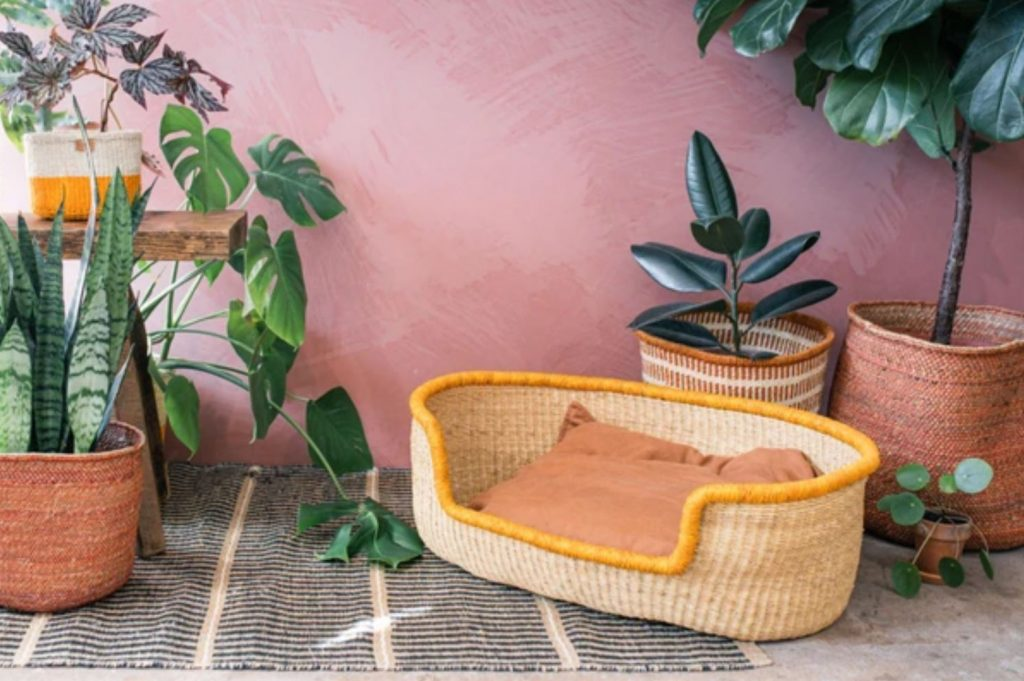 Eco-friendly sustainable dog basket by The Basket Room