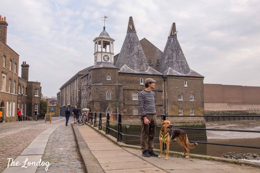 Dog and man stand near the river at Three Mills Island