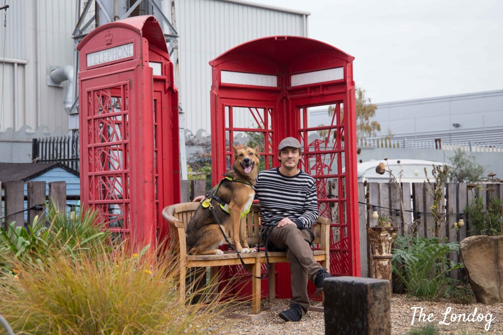Man and dot sitting on a bench in a red phone booth at dog-friendly Cody Dock