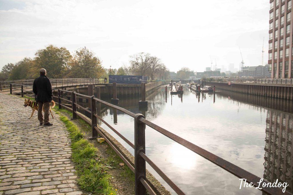 Dog and man walking along the Three Mills Wall
